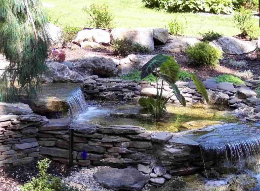 Kio Pond Suffolk County NY