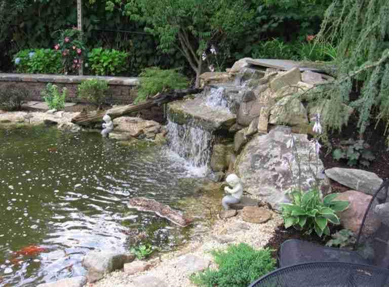Koi Pond Installer