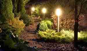 Landscaping Lighting Designer Roslyn