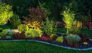 Landscape Lighting Designer Babylon ny