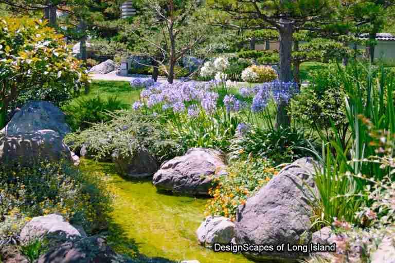 designing wild-flower-garden